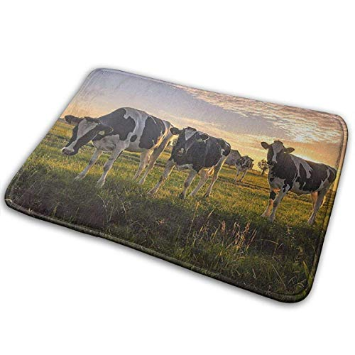 D-M-L 40X60CM Alfombra de Baño Antideslizante Absorbente Tapete del Piso Lavable a Máquina Vacas lecheras en Campo Farmer Farm Sunset