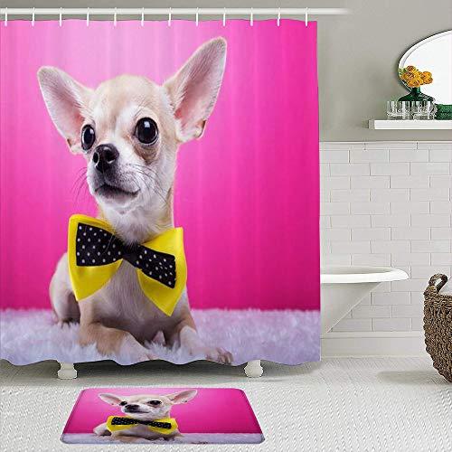 Juego de cortinas y tapetes de ducha de tela,Hermoso Chihuahua Perro Doméstico Orejas Bowtie Acostado Animal Lindo Ele,cortinas de baño repelentes al agua con 12 ganchos, alfombras antideslizantes