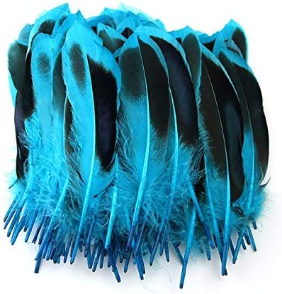 ADAMAI Natural Dyed Jade Max 90% OFF Duck Feathers Complete Free Shipping Crafts of Set in 4-6inch