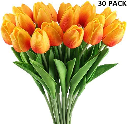 La mejor selección de Flores Top 5. 10