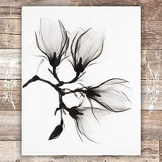 Black and White Magnolia Art Print - Unframed - 8x10 | Botanical Prints Wall Art