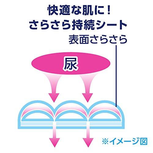 大王製紙エリエールナチュラ『さら肌さらり吸水ナプキンすっきり少量用』