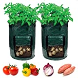 Garden4Ever Potato Planter Bags 2-Pack 7 Gallon Grow Bags Aeration Tomato Plant Pots Container with Flap and Handles