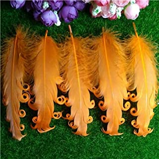 Pukido 20pcs/Lots 12-18CM Party Dress Decoration Feather pad,White Curly Goose Feather Pads,Curled Feather Pads for Headband - (Color: Orange)
