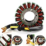 Areyourshop Magneto Stator Coil, Motorcycle Stator Coil Regulator Coil Stator Generator Coil fits for Motorcycle Street Bike 300 Duk 2014-2015