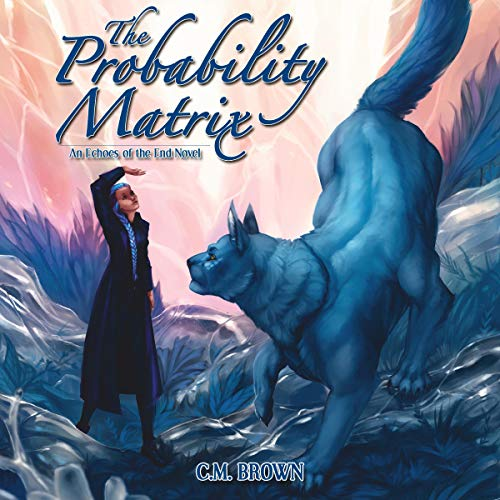 The Probability Matrix audiobook cover art