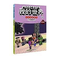 我的世界·红石学校系列·12末地城探险