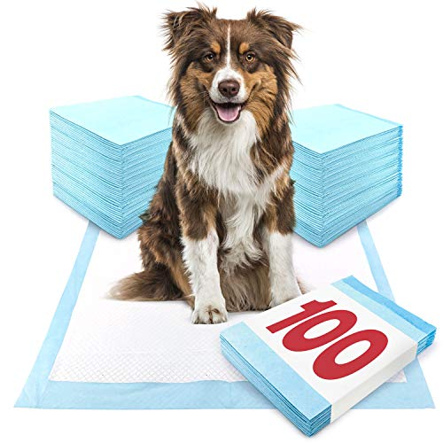 ValuePad Puppy Pads, Large 28x30 Inch, 100 Count - Economy Training Pads for Dogs, Leak Proof 5-Layer Design