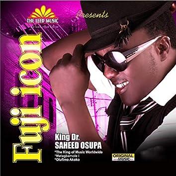 FUJI ICON (EP)