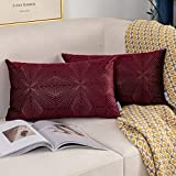 Vfuty Set of 2 Velvet Accent Throw Pillow Covers Soft Decorative Rectangle Cushion Case for Sofa Couch Bed Chair Home Decor Lumbar Pillowcases 12 x 20 inches 30 x 50 cm, Burgundy Red