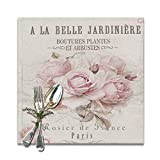 Jianyue French Shabby Chic Placemats for Dining Table Heat-Resistant Kitchen Banquet Party Table Mats Set of 6,(12x12inch)