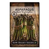 Beautiful -- Large full-color packet of Mary Washington Asparagus (Asparagus officinalis) seeds. An extremely popular asparagus variety producing thick, straight green stalks with a hint of purple at the spear. Minimum of 1.5g per packet. Good Eats -...