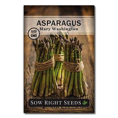 Sow Right Seeds - Mary Washington Asparagus Seed for Planting - Non-GMO Heirloom Packet with Instructions to Plant an Outdoor Home Vegetable Garden - Great Gardening Gift (1)