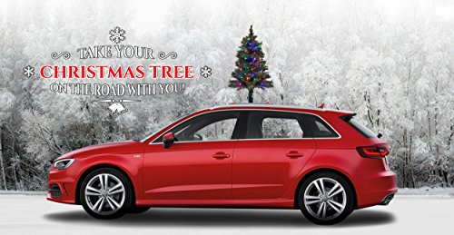 car with christmas tree on top decoration