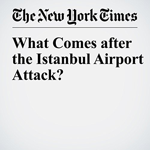 What Comes after the Istanbul Airport Attack? audiobook cover art