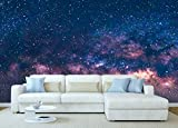 Oedim Fotomural Vinilo para Pared Universo | 150 x 100 cm | Salones