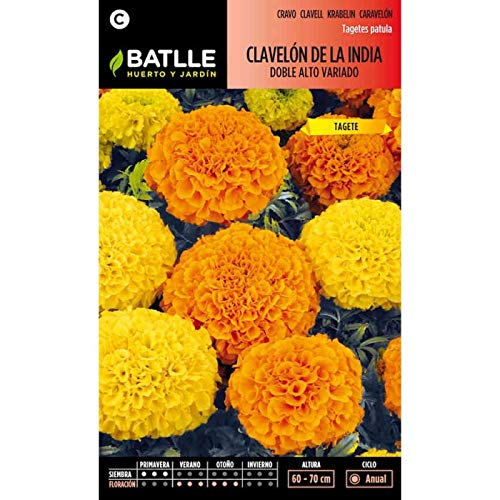Semillas de Flores - Clavelón de la India doble alto variado - Batlle