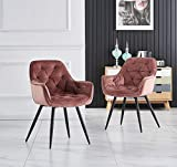 Keivvakn Velvet Dining Chairs Single with Arms Ring Occasional Fabric Upholstered Kitchen Armchairs for Restaurant Bedroom Living Room Side Chairs (2, Rose)