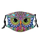 Sittin Pretty Owl Animal Print Washable Dust Proof and Windproof Mask Bandana Balaclava Breathable Reusable with 2 Filter for Adult Women Men & Teenager Outdoor Festival