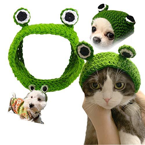 Gorro divertido con forma de rana para mascotas, diseo de rana, gorro para mascotas, disfraz divertido para gatos y perros, decoracin de Navidad, Halloween