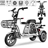 3 Wheel Electric Bicycle Adult Electric Scooter 12'' Lightweight And Compact All Terrain Mountain Tricycles with Electric Lock Child Seat for Home Shopping Use Traveling with Pets,Gray,1440Wh30ah