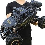 2.4Ghz Voiture à Grande Vitesse de RC Voiture Télécommandée - 4WD,avec Cadeau de Surprise pour garçons - Étanche/Antichoc (Noir) Voiture Électrique Rapide Véhicule Buggy Monstre