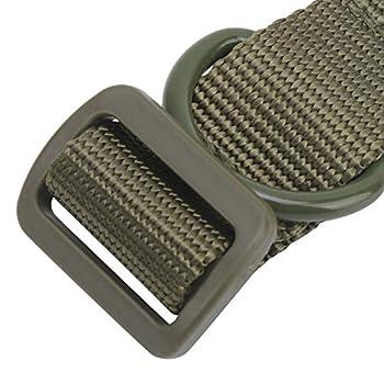 Sangle de suspension multifonction, anneau en D en métal solide Sangle de suspension auxiliaire de conception intelligente pour les outils extérieurs d'été pour pique-nique pour piscine(green)