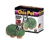 Chia Pet Bunny - Multi Planter - Grow a Chia Pet Bunny or Your Favorite Plant