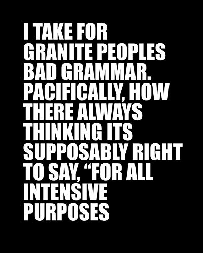 I TAKE FOR GRANITE PEOPLES BAD GRAMMAR. PACIFICALLY, HOW THERE ALWAYS THINKING ITS SUPPOSABLY RIGHT TO SAY 'FOR ALL INTENSIVE PURPOSES: Funny Meme Gag Gift 8' x 10' Dot Grid Journal