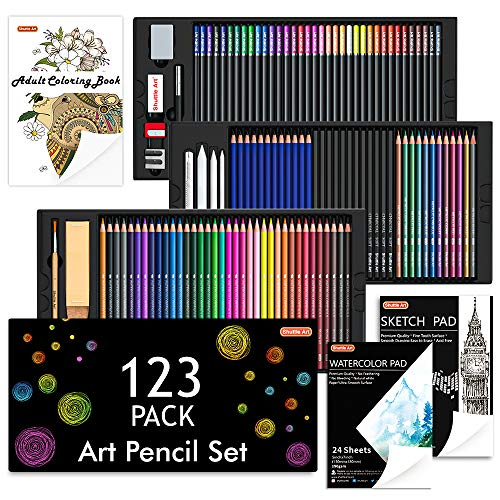 Zeichenset, Shuttle Art 123 teiliges Kunst-Stifte-Set, 36 Aquarellstifte, 36 Buntstifte auf Ölbasis, 12 Skizzenstifte, 12 Metallic Buntstifte, 12 Kohlestifte, 15 teiliges Malset, Art Pencils