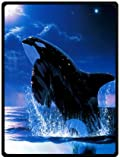 Orca Killer Whales Whale Killer Whales Queen Blanket Sumptuously Soft Plush Blanket 58' x 80' (Large)