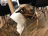 Champion /L&J Pets UK Bozal de cuero ligero para perro Bull Terrier y otros hocicos similares (BT1, marrón)