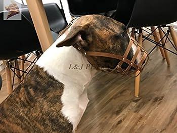 Muselière en cuir léger pour chien Bull Terrier anglais et autres chiens au museau similaire