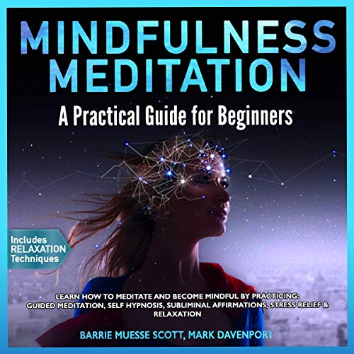 Mindfulness Meditation: A Practical Guide for Beginners audiobook cover art