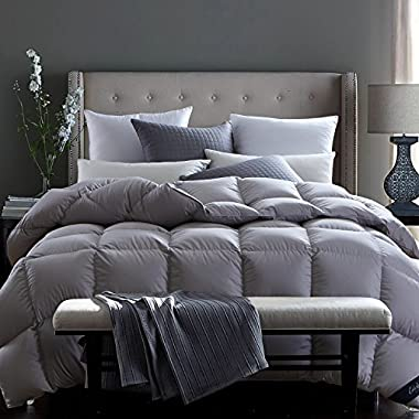 Globon Fusion White Goose Down Comforter Queen 45oz, 600 Fill Power, 300 Thread Count, Down Proof Shell, Hypoallergenic, With Corner Tabs, All Season,Bluish Grey