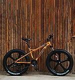 AISHFP Bicicleta de montaña para Fat Tire, Freno de Disco Doble/Bicicletas de Crucero con Marco de Acero de Alto Carbono, Bicicleta de Moto de Nieve de Playa, Ruedas de 24 Pulgadas,Naranja,24 Speed
