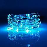 LED-Lichterkette, 1,8 m, 20 Mikro-Lichter auf silbernem Kupferdraht (Batterien im Lieferumfang...