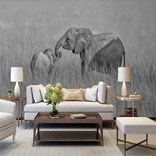 DZBHSCL 4D behang wandschilderingen, Nordic eenvoudige zwarte en witte weide olifant kunstdruk formaat fotobehang poster voor woonkamer bank Tv achtergrond slaapkamer muur huis decoratie 104in×168in 260cm(H)×420cm(W)