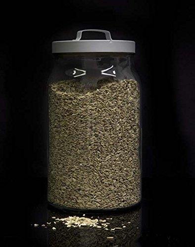 Anis grano limpio a granel - 1000