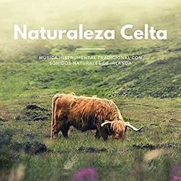Naturaleza Celta: Música Instrumental Tradicional con Sonidos Naturales de Irlanda