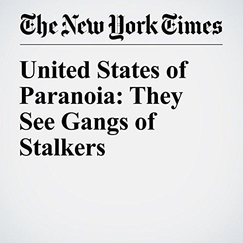 United States of Paranoia: They See Gangs of Stalkers audiobook cover art