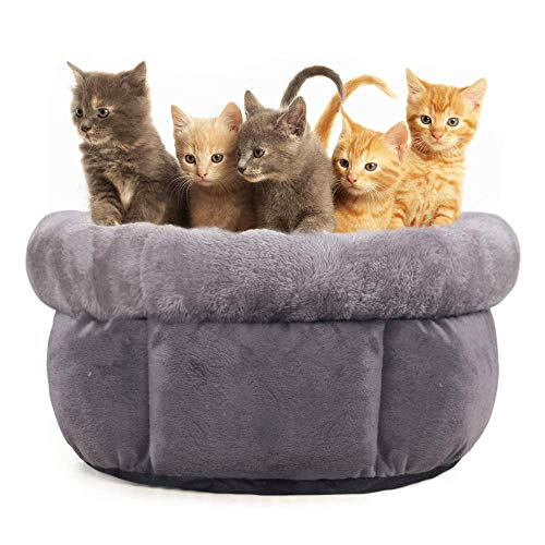 Allisandro pluizige kattenmand | 80 x 60 cm | Lichtgrijs | Met superzachte en dubbelzijdige bekleding