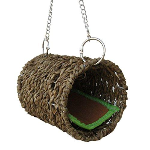 Favourall Natürliches Seegras Hängematte Spielen Tunnel Hängendes Bett mit Matte Spielzeug Haus für Haustier Ratte Hamster