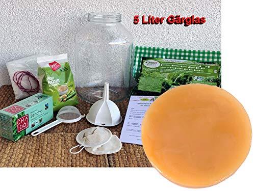 Kombucha-Komplett-Set OkiraVit® XL-Premium mit 5 L Gärglas, Anleitung und Anwuchsgarantie. Aus dem Heilbad Bad Kohlgrub.