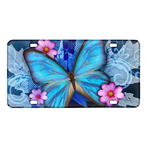 Amzbeauty Blue Butterfly Car License Plate Cover Novelty Custom Auto Tag Automotive License Plate Covers Vehicle Decorative Gift for Men Women Girls Boys
