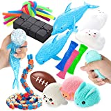 Sensory Tools Fidget Toy Set 22 Pcs Bundle, Kids and Adults Stress and Anxiety Relief Gadgets with Infinity Cube, Stretchy String, and More, Therapeutic Toys for Autism, ADHD, and Other Special Needs