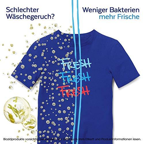 Sagrotan Wäsche-Hygienespüler Frisch, Desinfektionsspüler für hygienisch saubere und frische Wäsche, 4 Stück (4 x 1,5l) - 2
