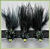 ARC Fishing Flies 70Fliegenfischen Fliegen Nassfliegen trocknet Nymphs Signalempfänger & Fly Box auf Haken 101214