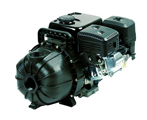Hypro 2' PowerPro 6.5 hp Polypropylene Transfer Pump w/ ELECTRIC START