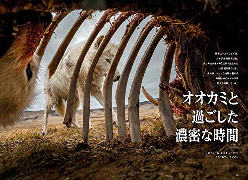 『ナショナル ジオグラフィック日本版 2019年9月号』の6枚目の画像
